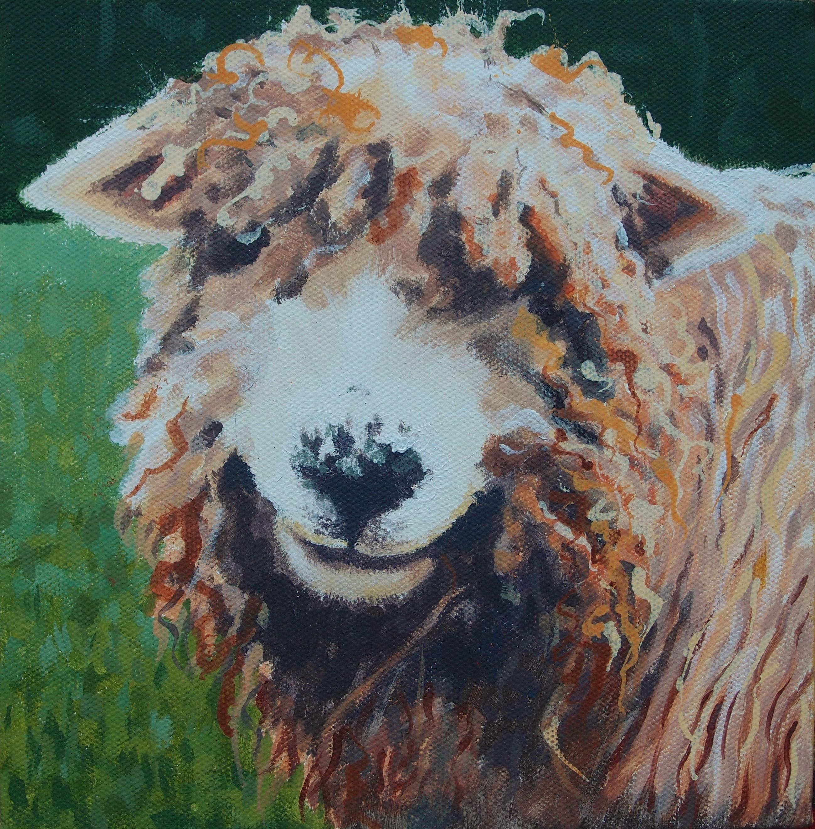 Margaret Crutchley  Bad Hair Day  Original Animal Portrait
