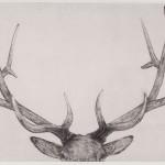Guy Allen Gunton Set Wychwood Art