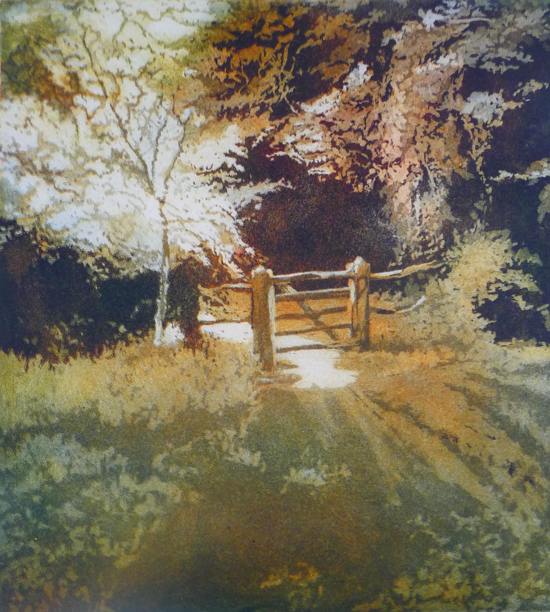 Sussex Glade (2)