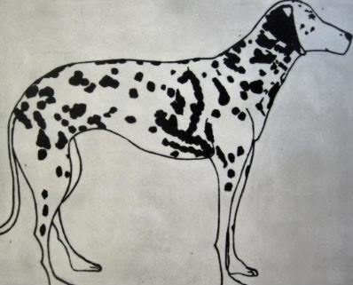 Kate Boxer Dalmation Wychwood art