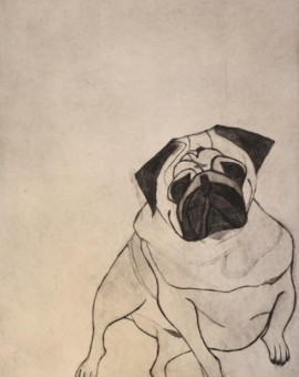 Kate Boxer Fred Wychwood art