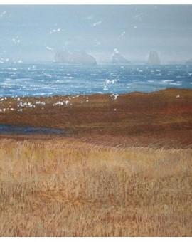 Judith Yarrow Shetland- Uyea Wind Wychwood art