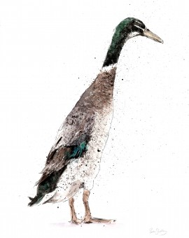 duck2 low res lighter