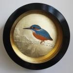 KingfisherFrontView_SallyAnnJohns