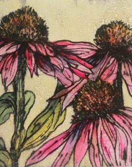 Vicky Oldfield, Late summer echinacea, Wychwood Art, Original Print, Royal Academy Summer Exhibition Artist