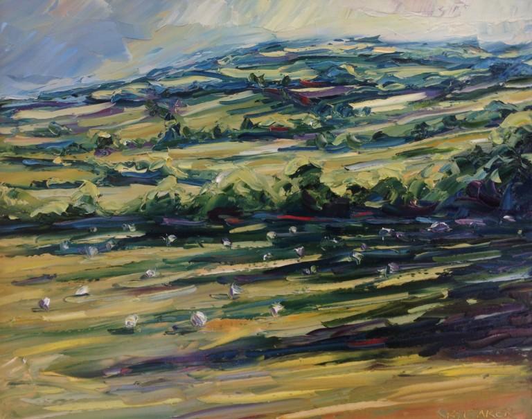 Rupert Aker Long Shadows and Sheep, Winchcombe
