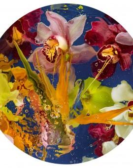 Allan Forsyth Aqua Flora N°3 Wychwood Art