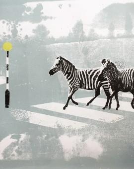 Zebra Crossing II