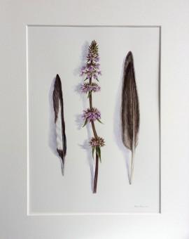 MARIE ROBINSON Along the Straight and Narrow - Wychwood Art