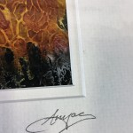 Anya-Simmons-Root-Valley-Farm-Wychwood-Art-Signature