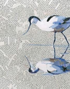 Reflective-Avocet-Paul-Bartlett-Wychwood-Art