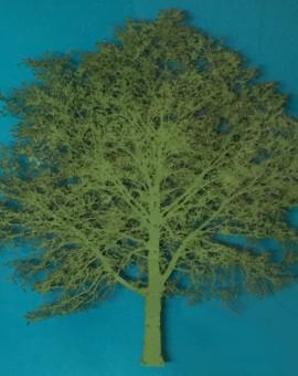 Emma Levine - Green Oak Tree - Wychwood Art