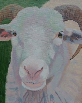 Margaret Crutchley  Only Ewe  Original Animal Portrait