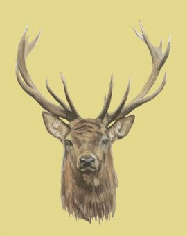 Deer Print Original painting illustration wall Art Waychood Art Yellow