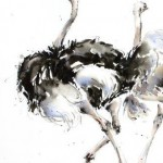 A-Trio-of-Ostrich-62cm-x-44cm-Watercolour-Ink-£1150 copy 2