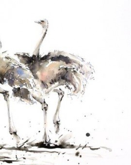 A-Trio-of-Ostrich-62cm-x-44cm-Watercolour-Ink-£1150 copy
