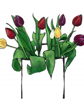 Mixed Tulips_16__x20___2