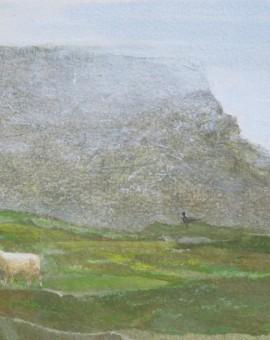 shetland 3
