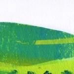 Spring-fields1 copy