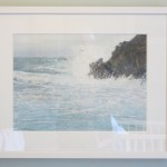 Cornwall Prussia Cove Bird in the spray Judith Yarrow