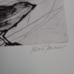 Kate Boxer, Bird Art, Animal Art, Drypoint Print, Kate Boxer Prints