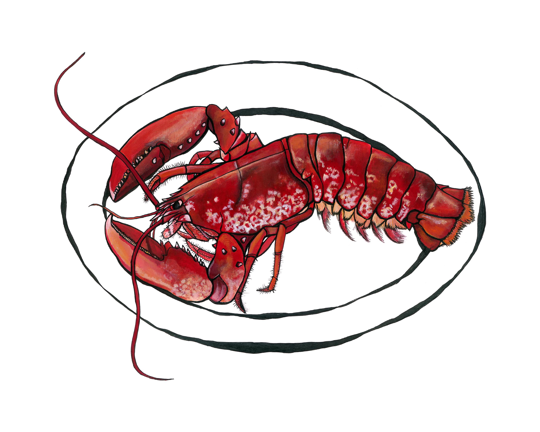 Dartmouth Lobster