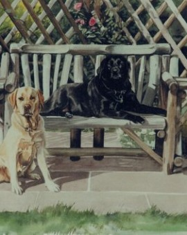 labs_by_garden_seat
