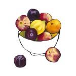 Citrus Bowl 2