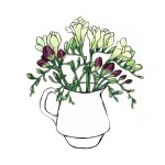 Purple and White Freesias