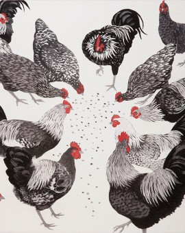 Pecking Order by Rosemary Farrer