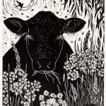 Summer Meadow by Rosemary Farrer Wychwoodart. jpeg