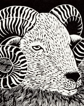 Wiltshire Horn Ram by Rosemary Farrer
