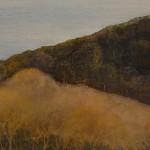 Judith-Yarrow-Clovellt-Thw-Wilderness-Wychwood-art copy 2
