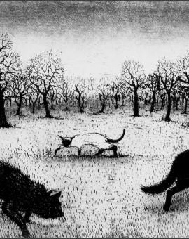 SouthallTim_Prowling Cats