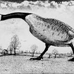 Tim Southall, Hissing Goose, Wychwood art