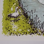 Tim Southall, The Fox and Goose, Limited Edition Prints, Landscape Prints 6