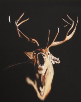 Steve Shaw Roaring Stag Wychwood art