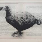 Tammy Mackay Forever Wychwood art