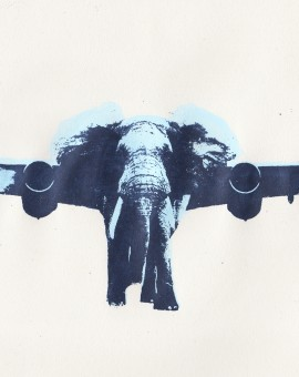 Katie Edwards Jumbojet Wychwood art