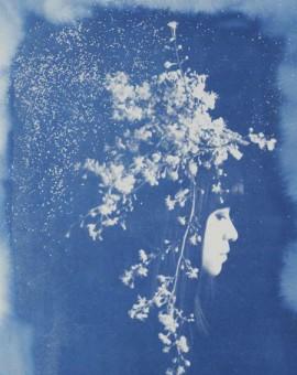 Rosie Emerson Capella Wychwood art