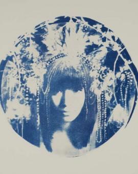 Rosie Emerson Dhama Wychwood art