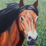 Margaret Crutchley Exmoor Pony Wychwood Art Affordable Art