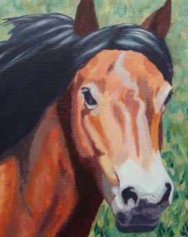 Margaret Crutchley Exmoor Pony Wychwood Art Affordable Art