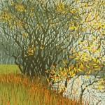 Mark-A-Pearce-Autumn-Riverbank-wychwood-art copy