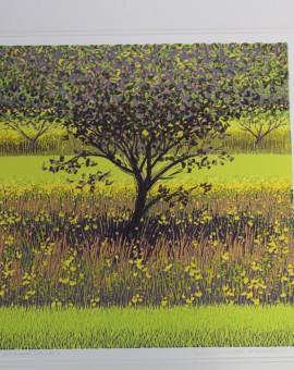 Mark A Pearce, Limited Edition Landscape Print, Nature Art 2