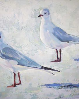 SharonWilliams Gulls