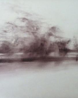 Annamarie Dzendrowskyj.Twilight - M25 VIII .Wychwood Art