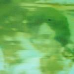 Dan-McDermott-Party-Wychwood-Art copy 3
