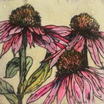 Vicky Oldfield, Late summer echinacea, Wychwood Art, Original Print, Royal Academy Summer Exhibition Artist
