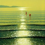 mark-a-pearce-watery-sunshine-with-buoys-wychwood-art